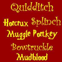 Quidditch Horcrux Splinch Muggle Portkey Bowtruckle Mudblood